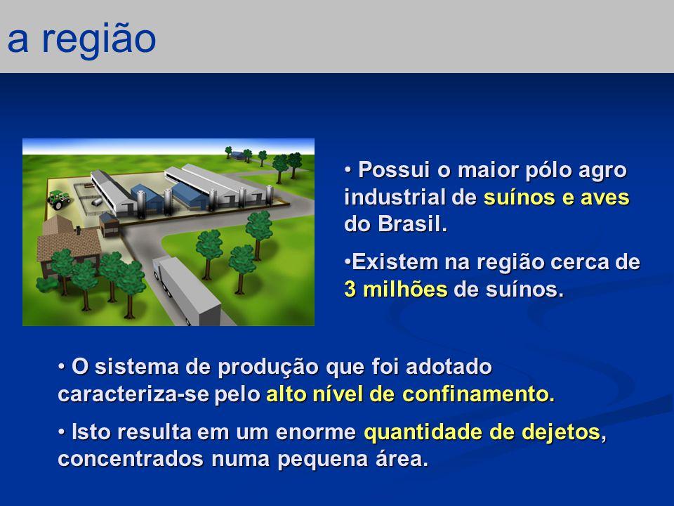 a região Possui o maior pólo agro industrial de suínos e aves do Brasil. Existem na região cerca de 3 milhões de suínos.