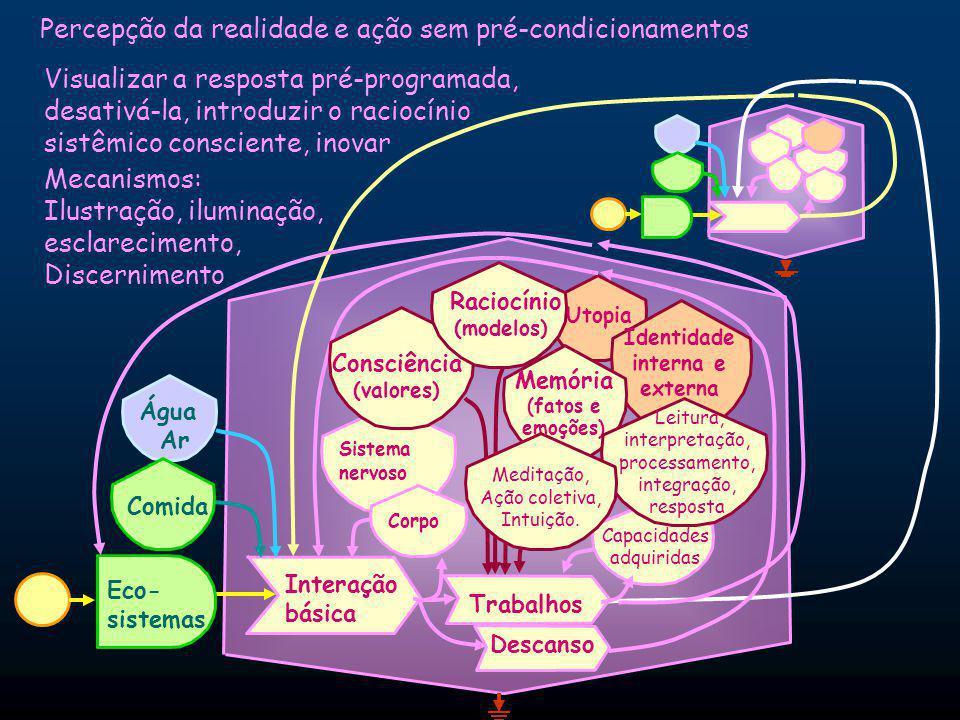 Percepção da realidade e ação sem pré-condicionamentos