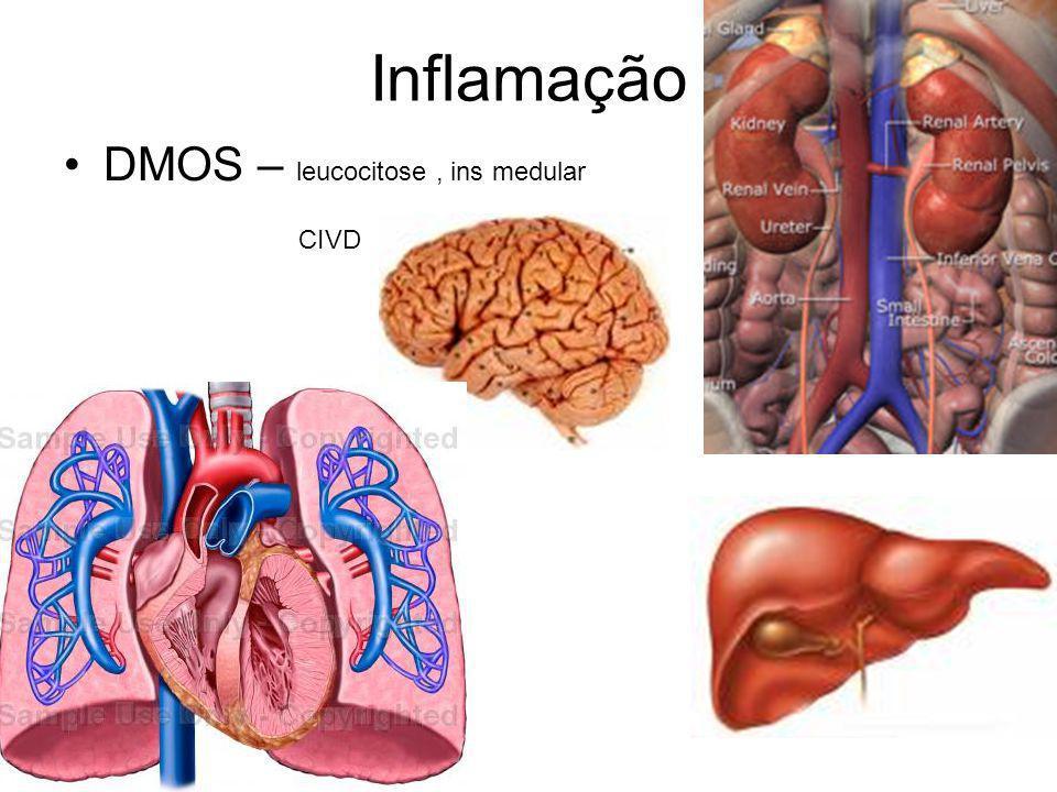 Inflamação DMOS – leucocitose , ins medular CIVD