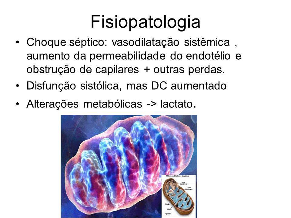 Fisiopatologia Choque séptico: vasodilatação sistêmica , aumento da permeabilidade do endotélio e obstrução de capilares + outras perdas.