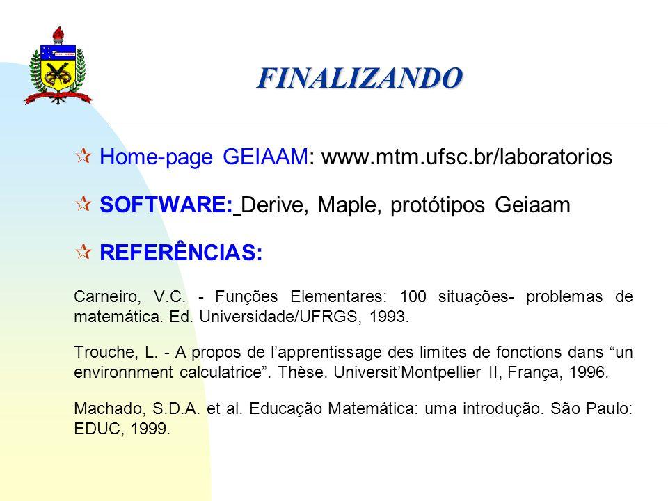 FINALIZANDO  Home-page GEIAAM: www.mtm.ufsc.br/laboratorios