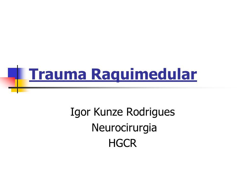 Igor Kunze Rodrigues Neurocirurgia HGCR