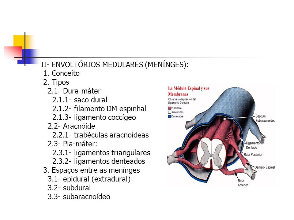 II- ENVOLTÓRIOS MEDULARES (MENÍNGES):