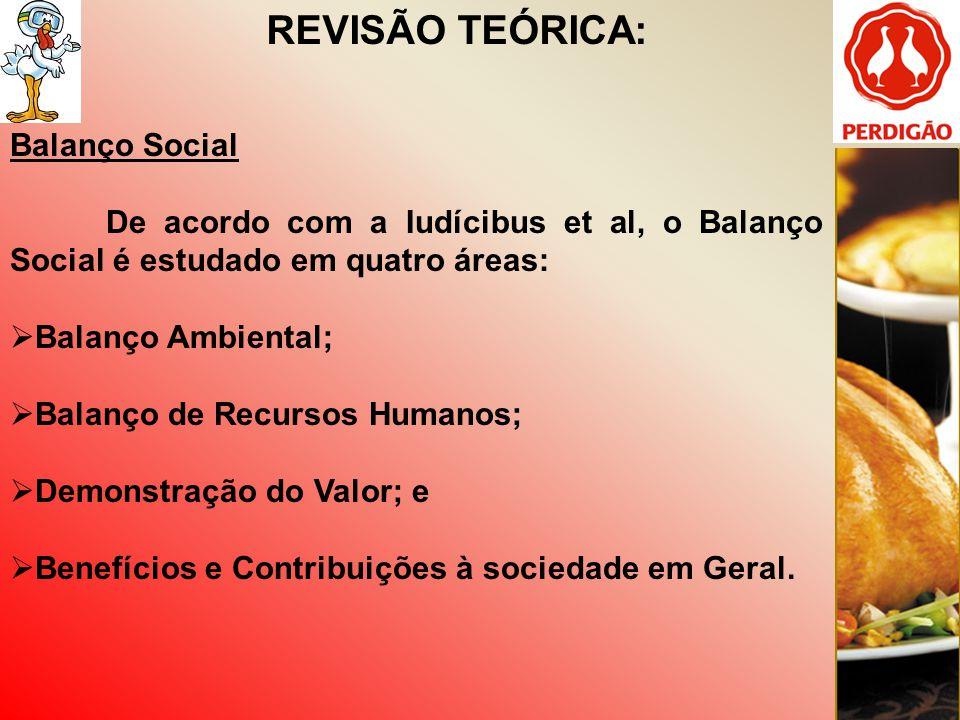 REVISÃO TEÓRICA: Balanço Social