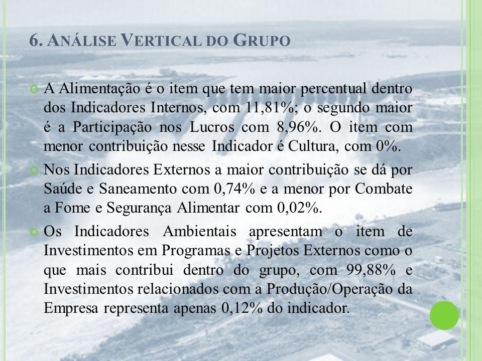 6. Análise Vertical do Grupo