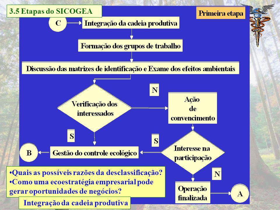 3.5 Etapas do SICOGEA Quais as possíveis razões da desclassificação Como uma ecoestratégia empresarial pode.
