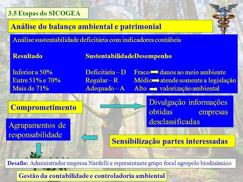 Análise do balanço ambiental e patrimonial