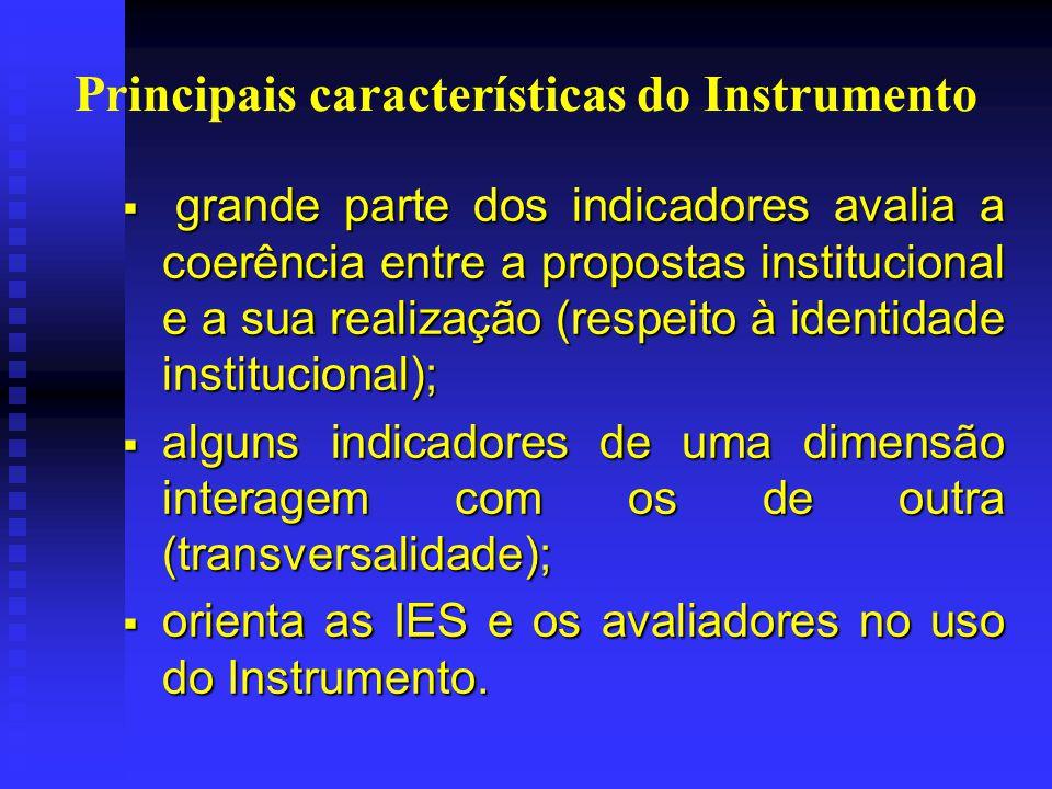 Principais características do Instrumento