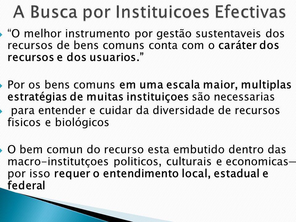 A Busca por Instituicoes Efectivas