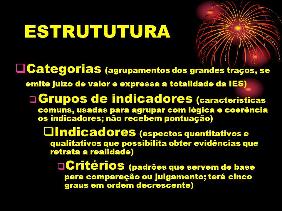 ESTRUTUTURA Categorias (agrupamentos dos grandes traços, se emite juízo de valor e expressa a totalidade da IES)