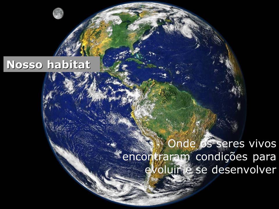 Nosso habitat Onde os seres vivos encontraram condições para evoluir e se desenvolver