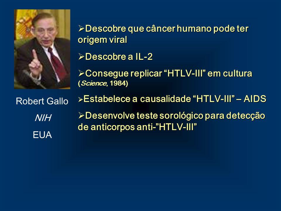 Descobre que câncer humano pode ter origem viral Descobre a IL-2