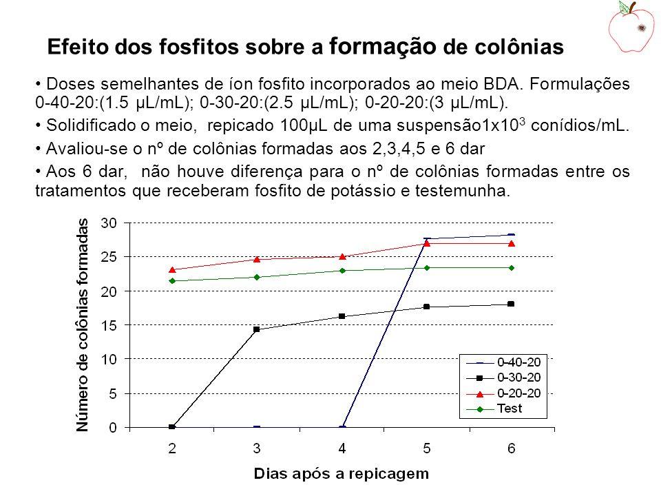 Efeito dos fosfitos sobre a formação de colônias
