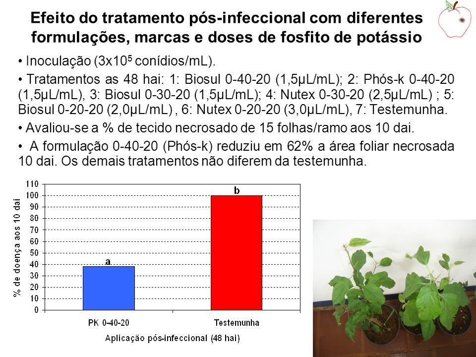 Efeito do tratamento pós-infeccional com diferentes formulações, marcas e doses de fosfito de potássio