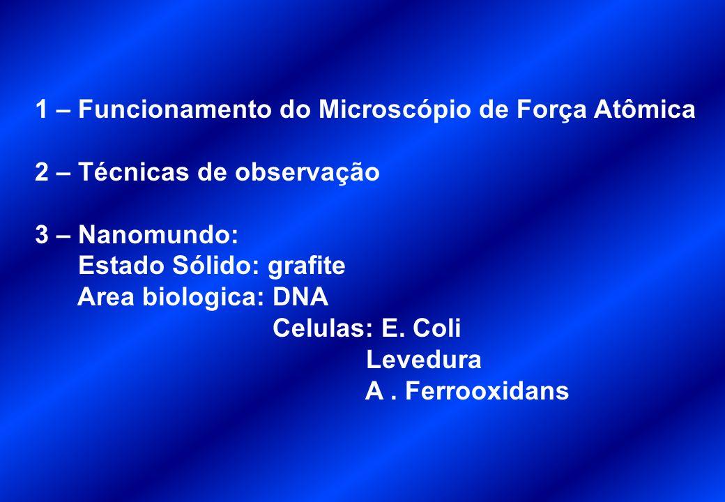 1 – Funcionamento do Microscópio de Força Atômica