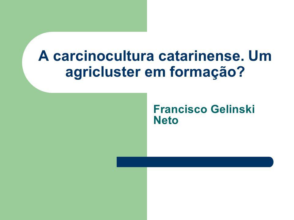 A carcinocultura catarinense. Um agricluster em formação