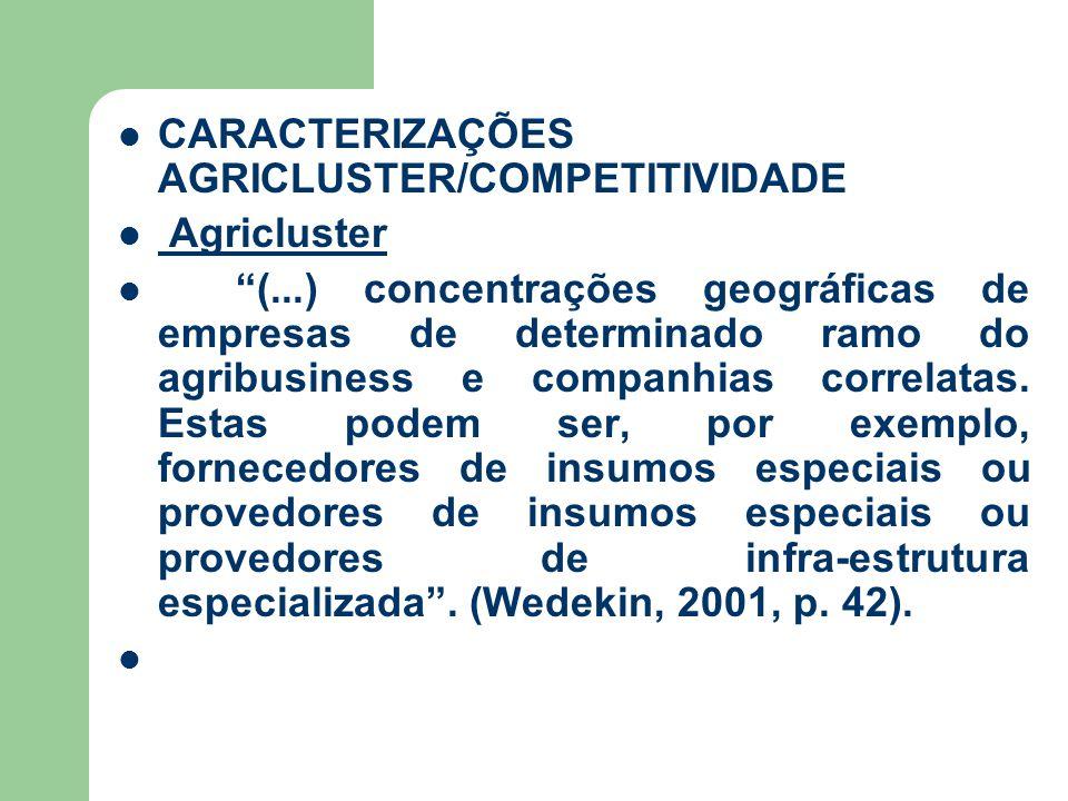 CARACTERIZAÇÕES AGRICLUSTER/COMPETITIVIDADE