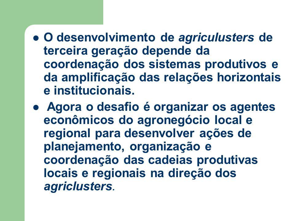 O desenvolvimento de agriculusters de terceira geração depende da coordenação dos sistemas produtivos e da amplificação das relações horizontais e institucionais.