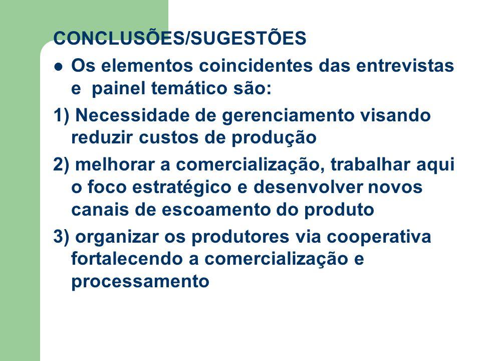 CONCLUSÕES/SUGESTÕES