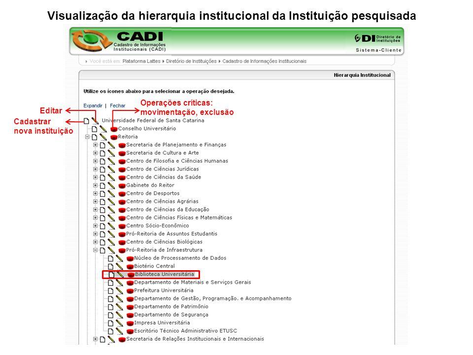 Visualização da hierarquia institucional da Instituição pesquisada