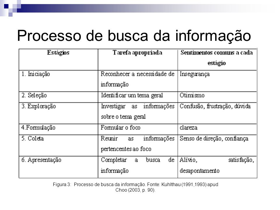 Processo de busca da informação
