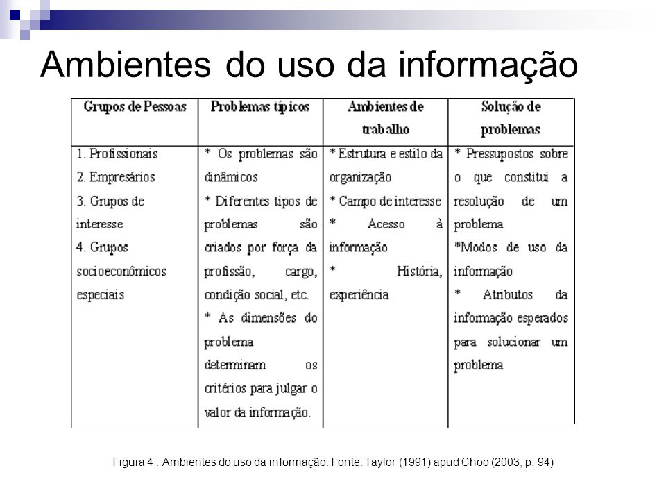 Ambientes do uso da informação