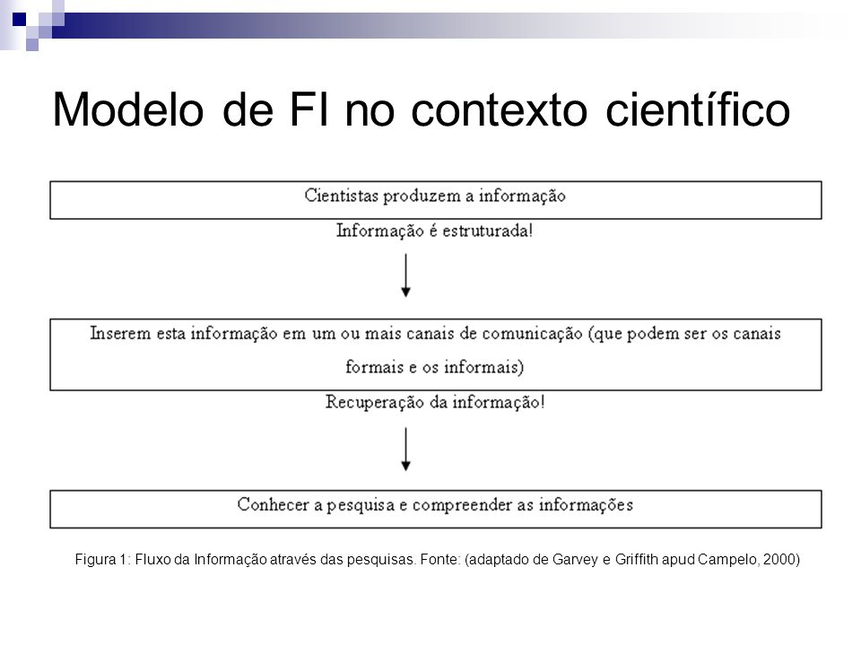 Modelo de FI no contexto científico
