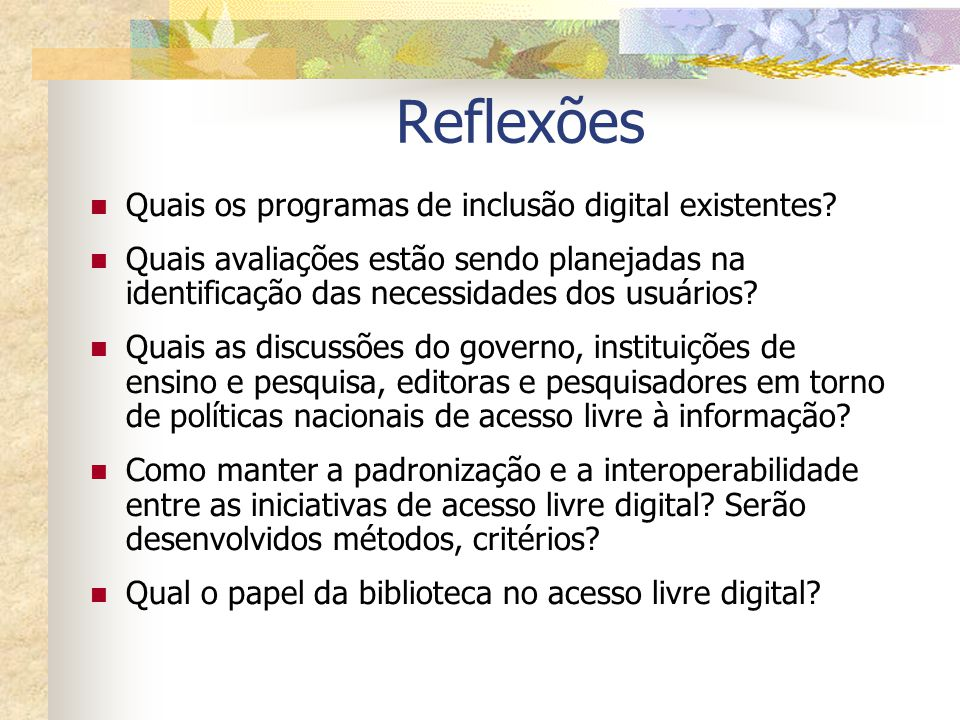 Reflexões Quais os programas de inclusão digital existentes