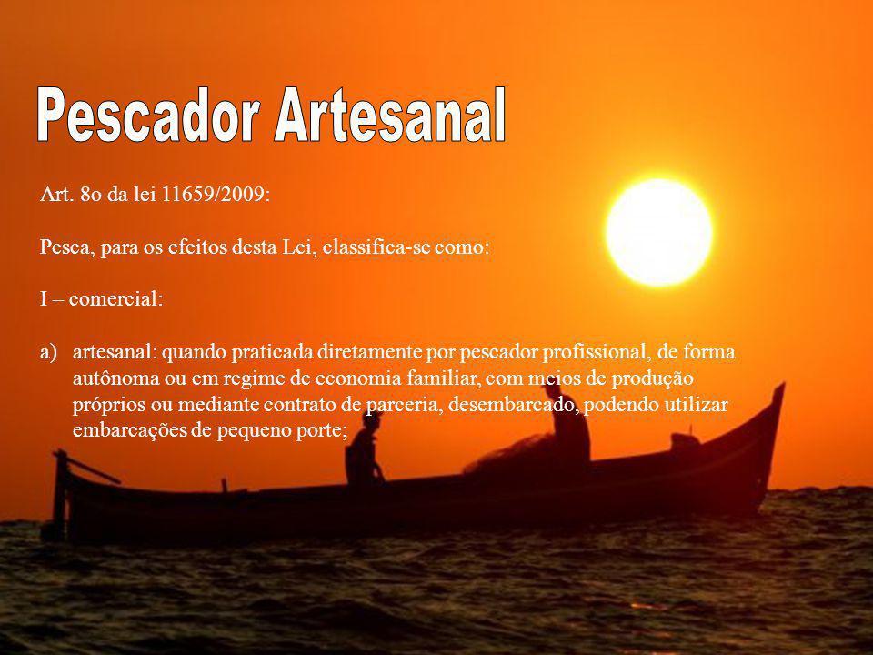 Pescador Artesanal Art. 8o da lei 11659/2009: