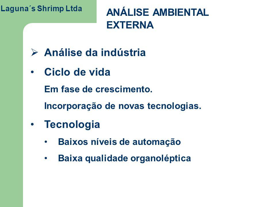 Análise da indústria Ciclo de vida Tecnologia