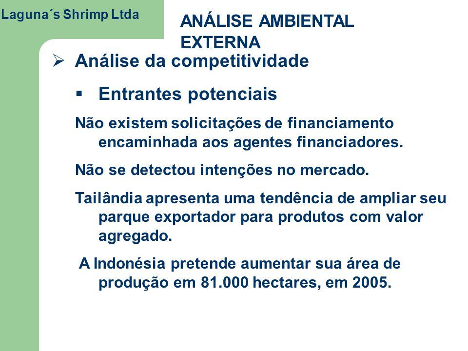 Análise da competitividade Entrantes potenciais