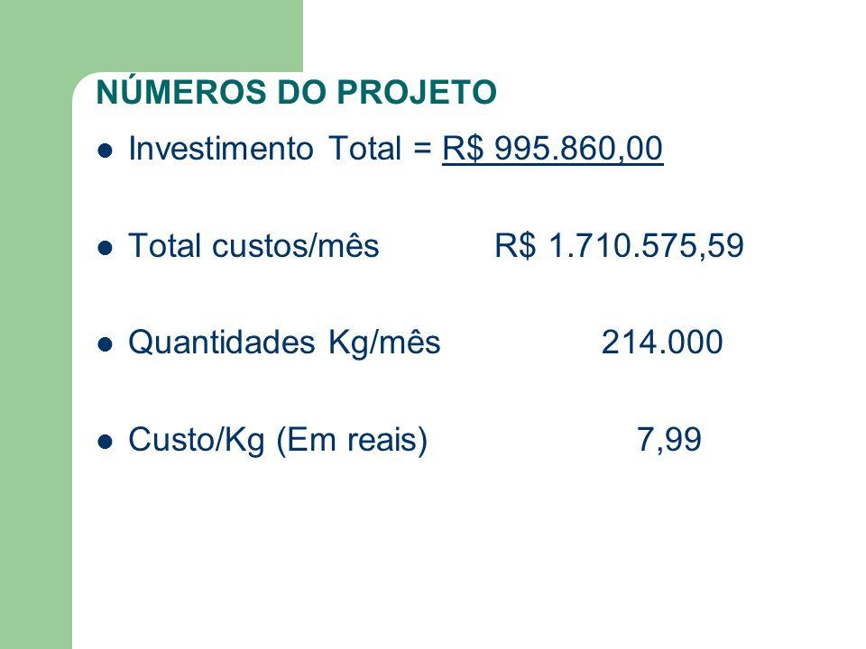 NÚMEROS DO PROJETO Investimento Total = R$ 995.860,00. Total custos/mês R$ 1.710.575,59.