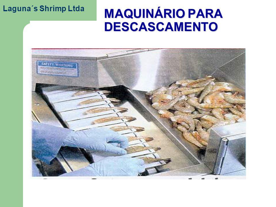 MAQUINÁRIO PARA DESCASCAMENTO