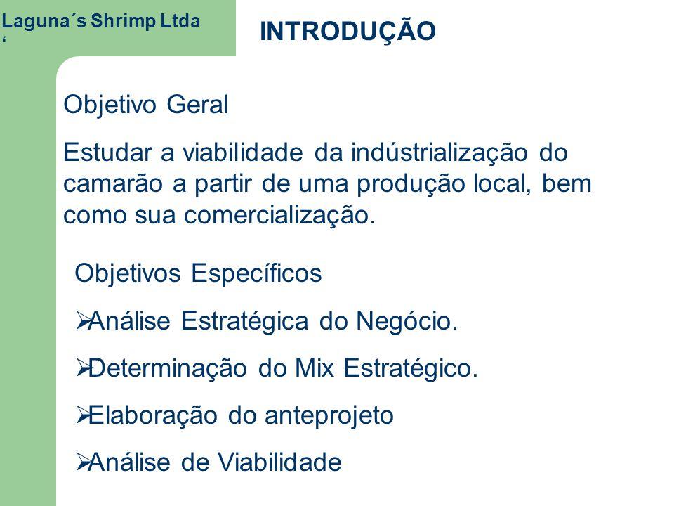 Objetivos Específicos Análise Estratégica do Negócio.