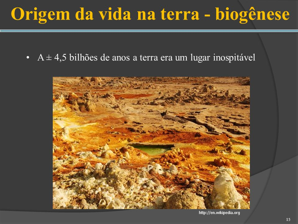 Origem da vida na terra - biogênese