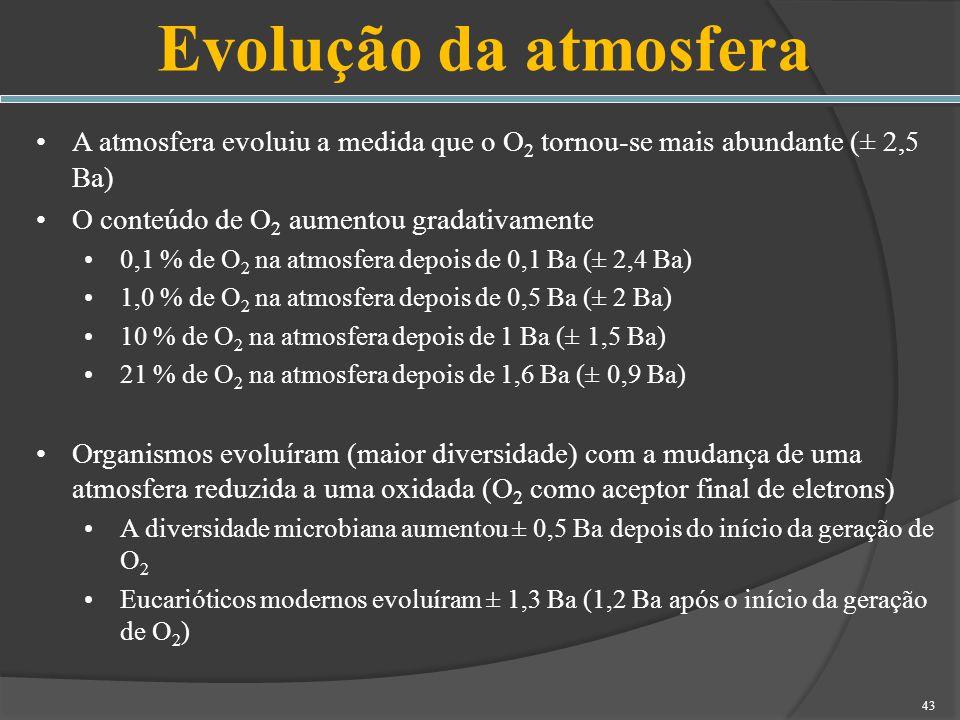 Evolução da atmosfera A atmosfera evoluiu a medida que o O2 tornou-se mais abundante (± 2,5 Ba) O conteúdo de O2 aumentou gradativamente.