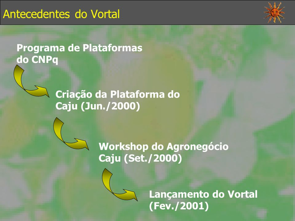 Antecedentes do Vortal