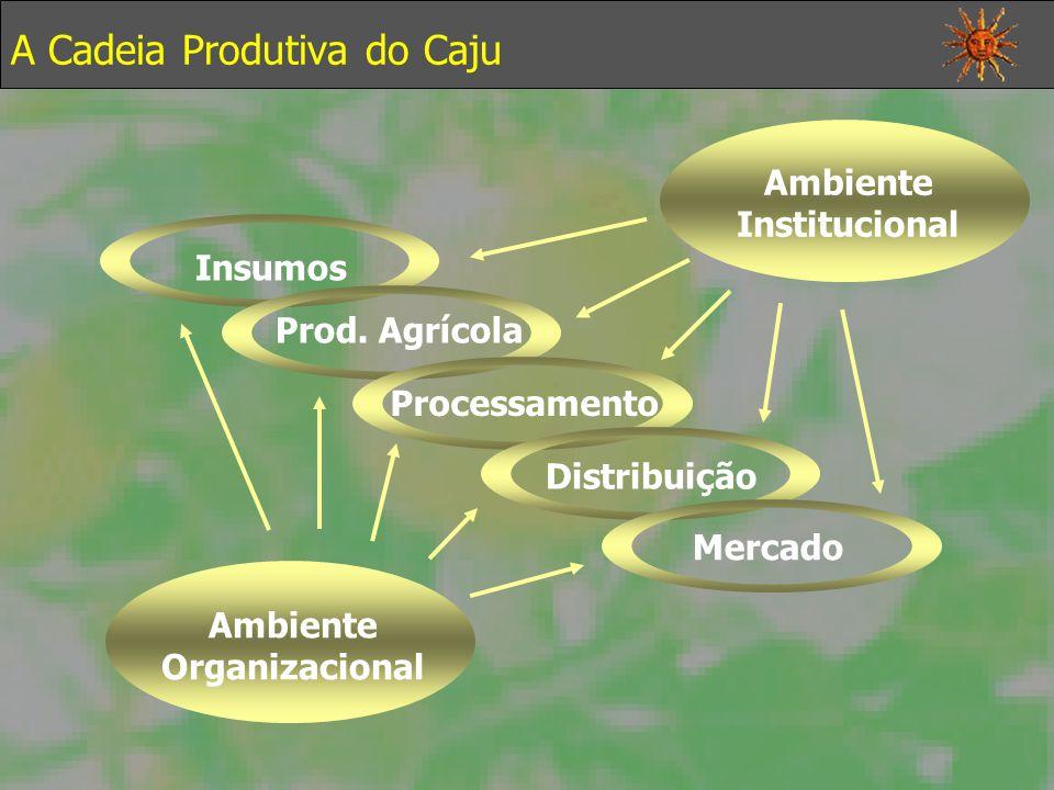 A Cadeia Produtiva do Caju