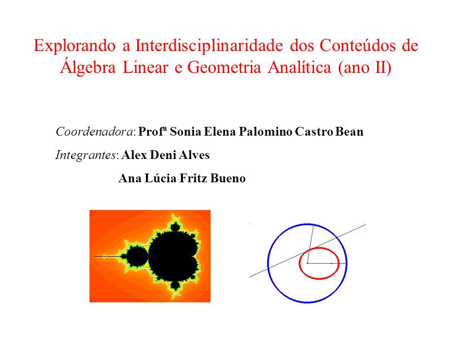 Explorando a Interdisciplinaridade dos Conteúdos de Álgebra Linear e Geometria Analítica (ano II)