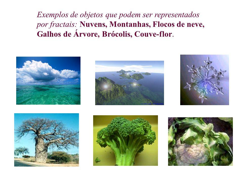 Exemplos de objetos que podem ser representados por fractais: Nuvens, Montanhas, Flocos de neve, Galhos de Árvore, Brócolis, Couve-flor.