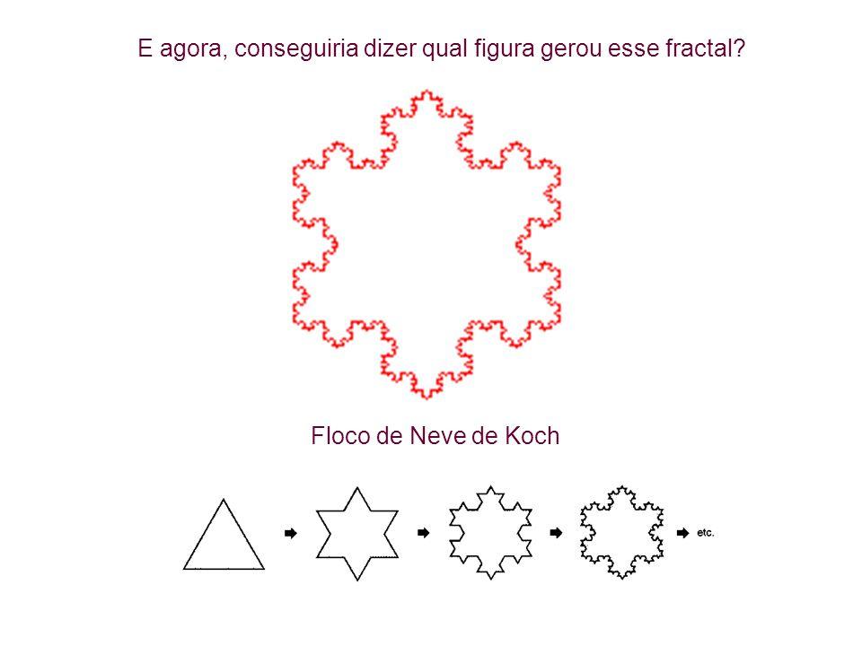 E agora, conseguiria dizer qual figura gerou esse fractal