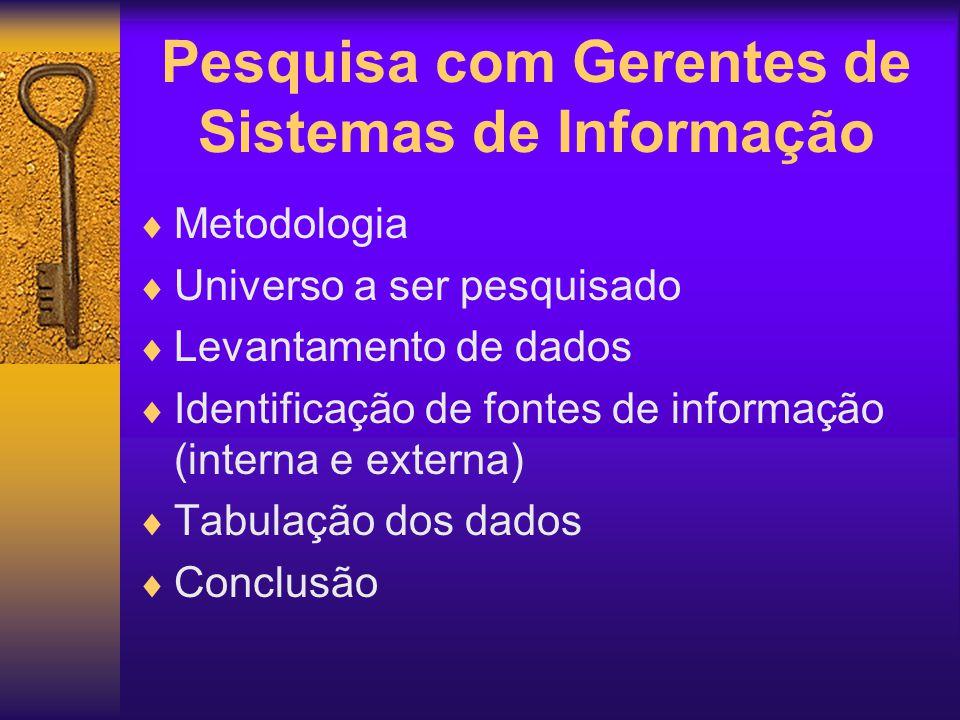Pesquisa com Gerentes de Sistemas de Informação