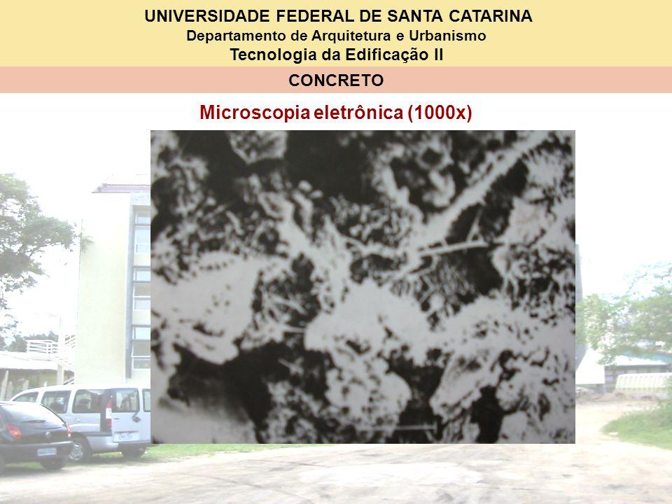 Microscopia eletrônica (1000x)