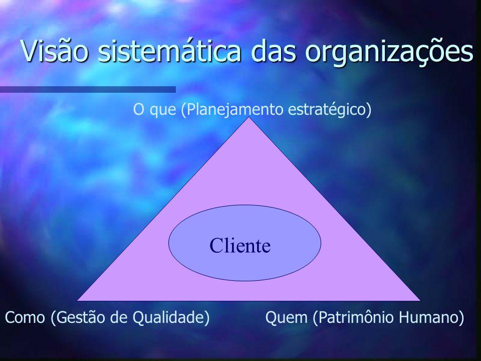Visão sistemática das organizações