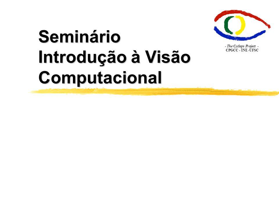 Seminário Introdução à Visão Computacional