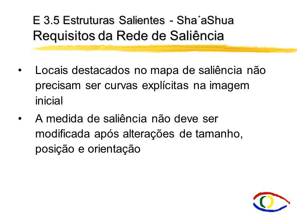E 3.5 Estruturas Salientes - Sha´aShua Requisitos da Rede de Saliência