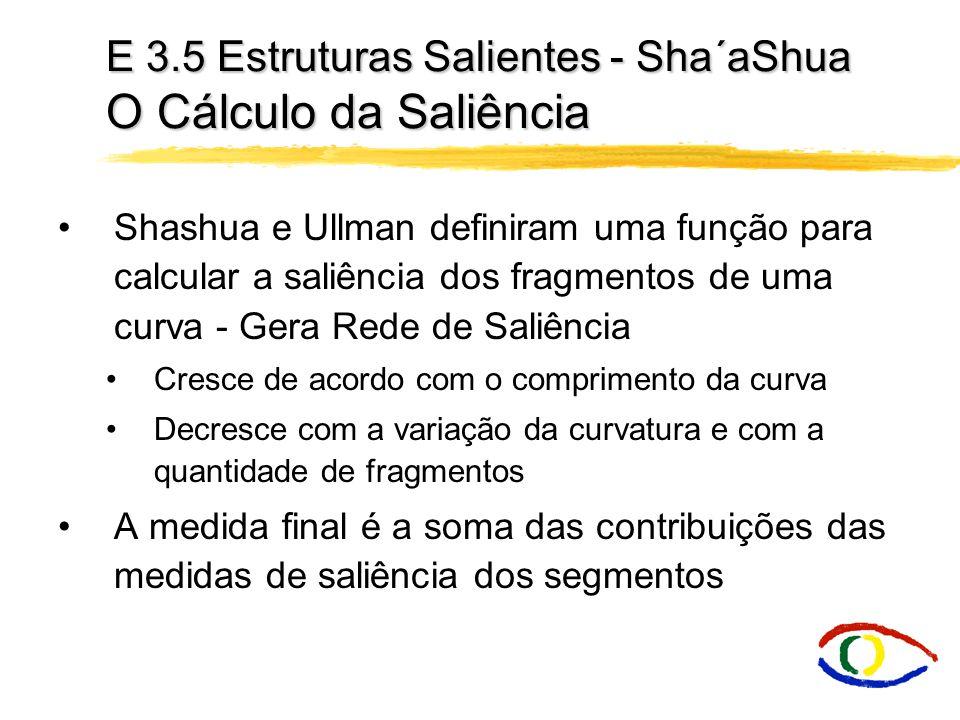 E 3.5 Estruturas Salientes - Sha´aShua O Cálculo da Saliência
