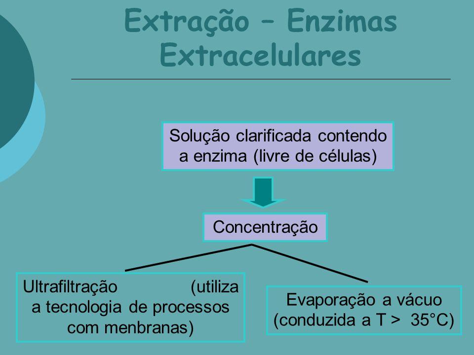Extração – Enzimas Extracelulares