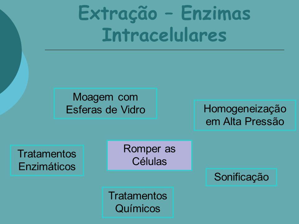 Extração – Enzimas Intracelulares