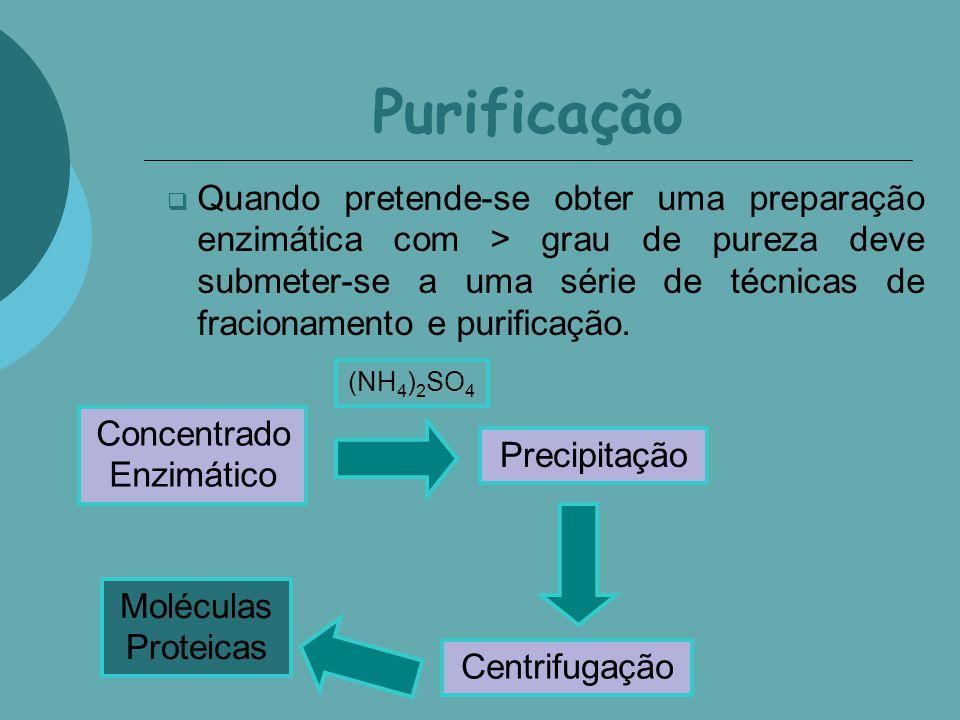 Concentrado Enzimático